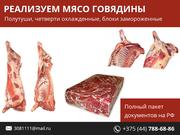 Мясо говядины по выгодным ценам.