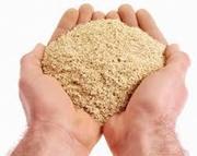 Продам зерно-,  ячмень,  пшеница,  овес,  кукуруза в наличии,  комби