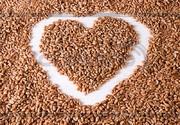 продаем пшеницу, овес, рожь, третикалий, кукурузу, доставка.могилевскаяобл