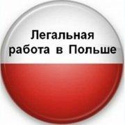 Могилевская доска объявлений работа сайт ищу работу бесплатное размещение объявлений