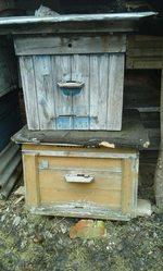 деревянные пчелиные ульи,  домики